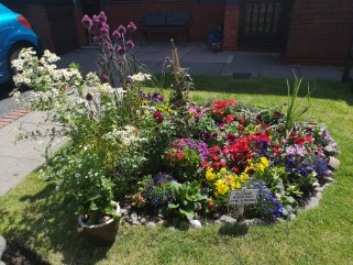 Housman Park Garden Competition Entry Image